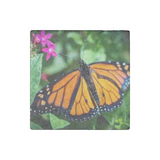 Monarch Danaus Plexippus Stone Magnet
