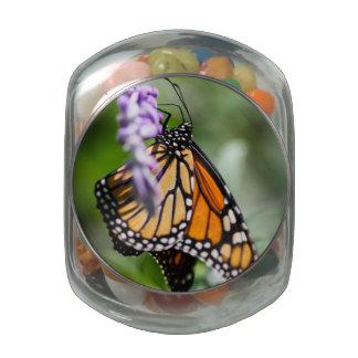 Monarch Danaus Plexippus Glass Jar