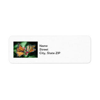Monarch Danaus Plexippus Return Address Labels