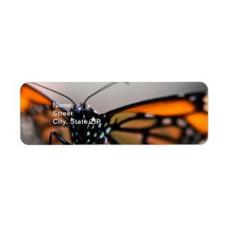 Monarch Danaus Plexippus Return Address Label