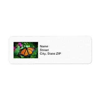 Monarch Danaus Plexippus Labels