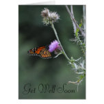 Monarch Get Well Soon Greeting Card