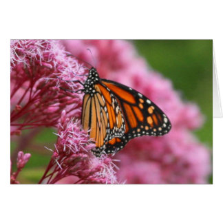 Monarch in the Weeds Greeting Card