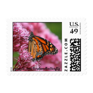 Monarch in the Weeds Postage Stamp
