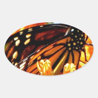 Monarch Madness.jpg Oval Sticker