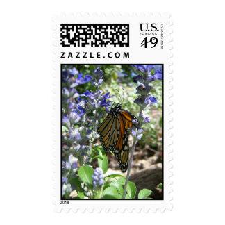 Monarch Majesty (3) Postage Stamps