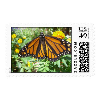 Monarch Majesty (4) Postage Stamps