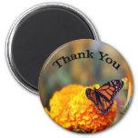 Monarch Marigold 2 Inch Round Magnet