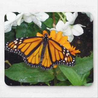 Monarch Mousepad