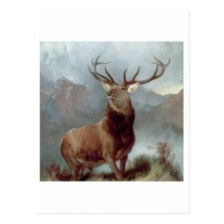 Monarch of the Glen, 1851 Postcard