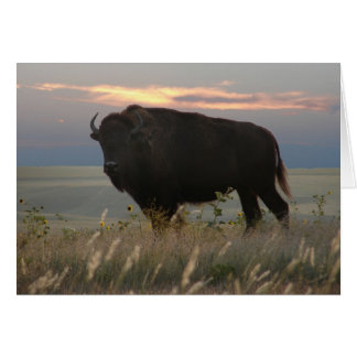 Monarch of the Plains Greeting Card