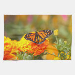 Monarch on a Marigold Towels