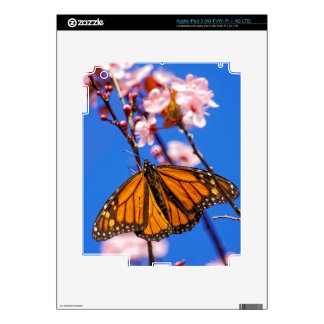 Monarch on Cherry Blossom Skin For iPad 3