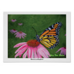 Monarch on Coneflower Poster