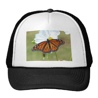 Monarch on Cosmos Trucker Hat
