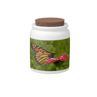 Monarch on Flower Candy Jar