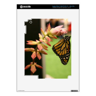 Monarch on Flower Decal For iPad 3