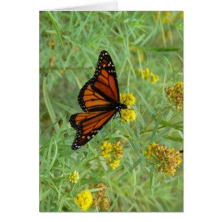 Monarch on Goldenrod Card