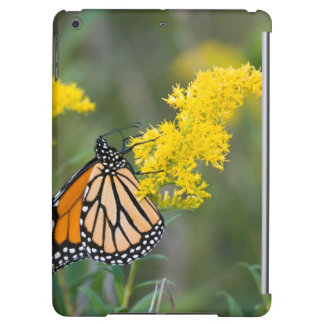 Monarch on Goldenrod iPad Air Cases