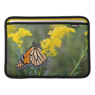 Monarch on Goldenrod MacBook Sleeves