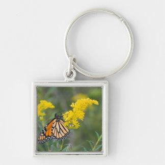Monarch on Goldenrod Keychain