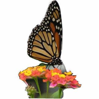 Monarch on Lantana Photo Sculpture