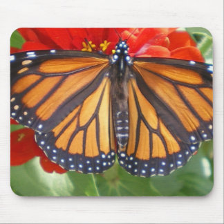 Monarch on Zinnia Mouse Pad