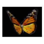Monarch Orange Butterfly Flying Insect Postcard