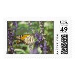 monarch postage stamp