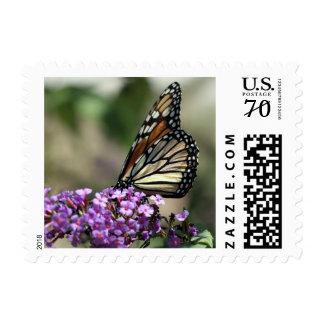 Monarch Stamp