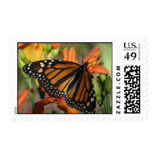 Monarch Stamps