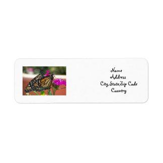 Monarch Twins #1-address label Return Address Label