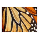 Monarch Wing ~ ATC Business Cards