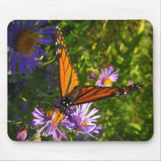 monarch with flwoers mouse pad
