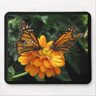 Monarchs Mouse Pad