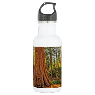 Monarchs of the Forest Water Bottle