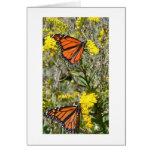 Monarchs on Goldenrod Greeting Card
