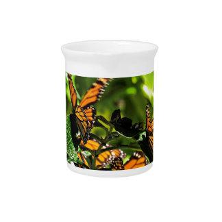 Monarchs Pitchers