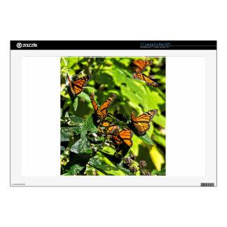 "Monarchs Decals For 17"" Laptops"