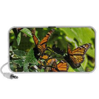 Monarchs Laptop Speaker