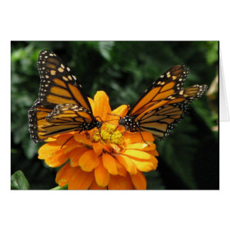 Monarchs Stationery Note Card