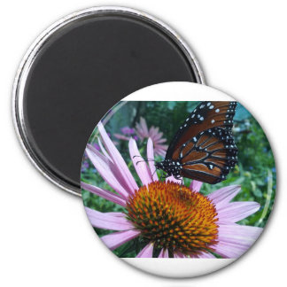 Monarchy butterfly 2 inch round magnet