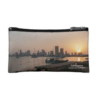 Monedero de Cartagena o bolso de los accesorios