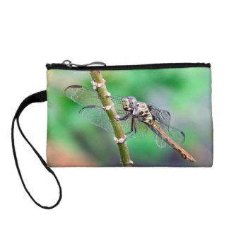 Monedero de la libélula