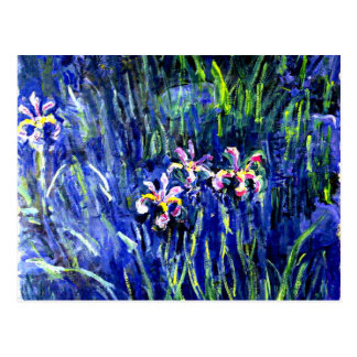 Monet - Irises Postcard