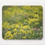 Monet_zazzle del coneflower de P2526a_yellow Alfombrilla De Raton