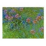 Monet's Agapanthus Flowers Postcard