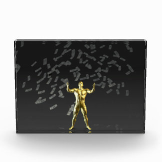 Money Falling From the Sky with Man Below Award