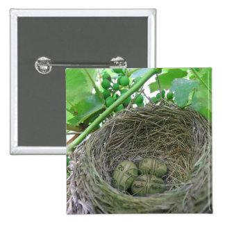 Money Nest Eggs 2 Inch Square Button