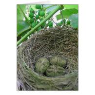 Money Nest Eggs Greeting Card
